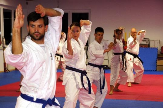 karate-436924_960_720