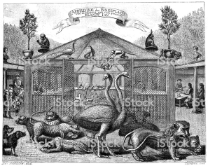 Antique illustration of zoo